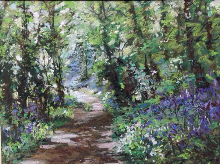 bluebell woods 2