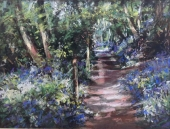 bluebell woods 4